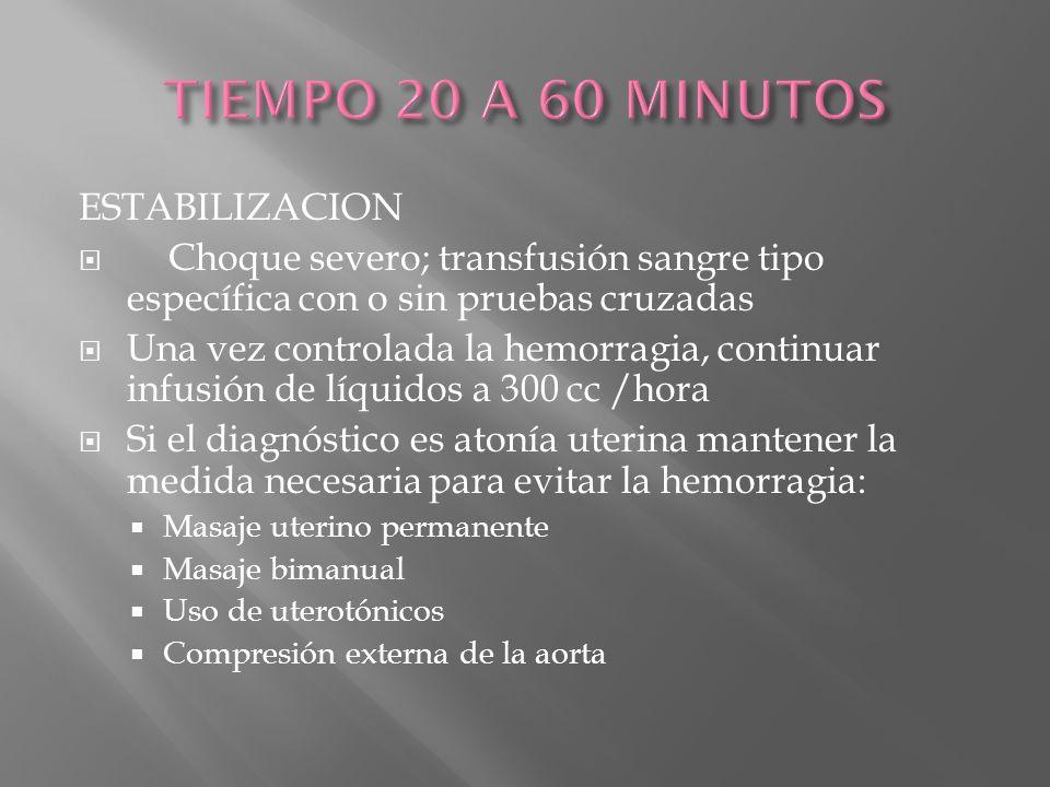 TIEMPO 20 A 60 MINUTOS ESTABILIZACION