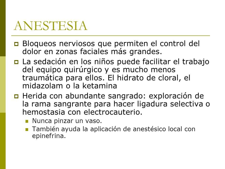 ANESTESIA Bloqueos nerviosos que permiten el control del dolor en zonas faciales más grandes.