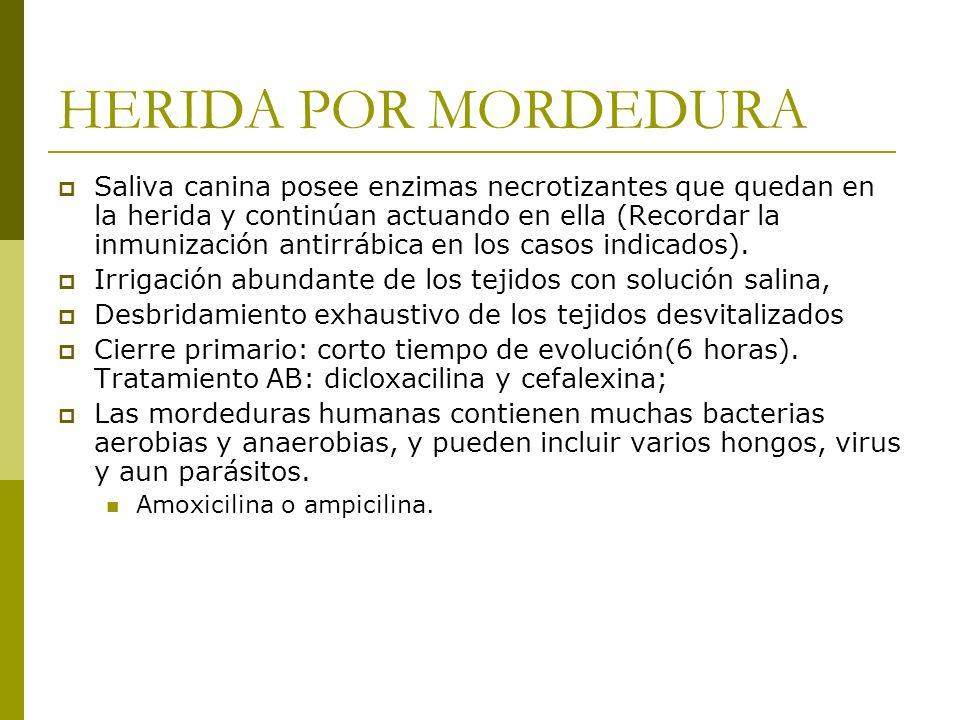 HERIDA POR MORDEDURA