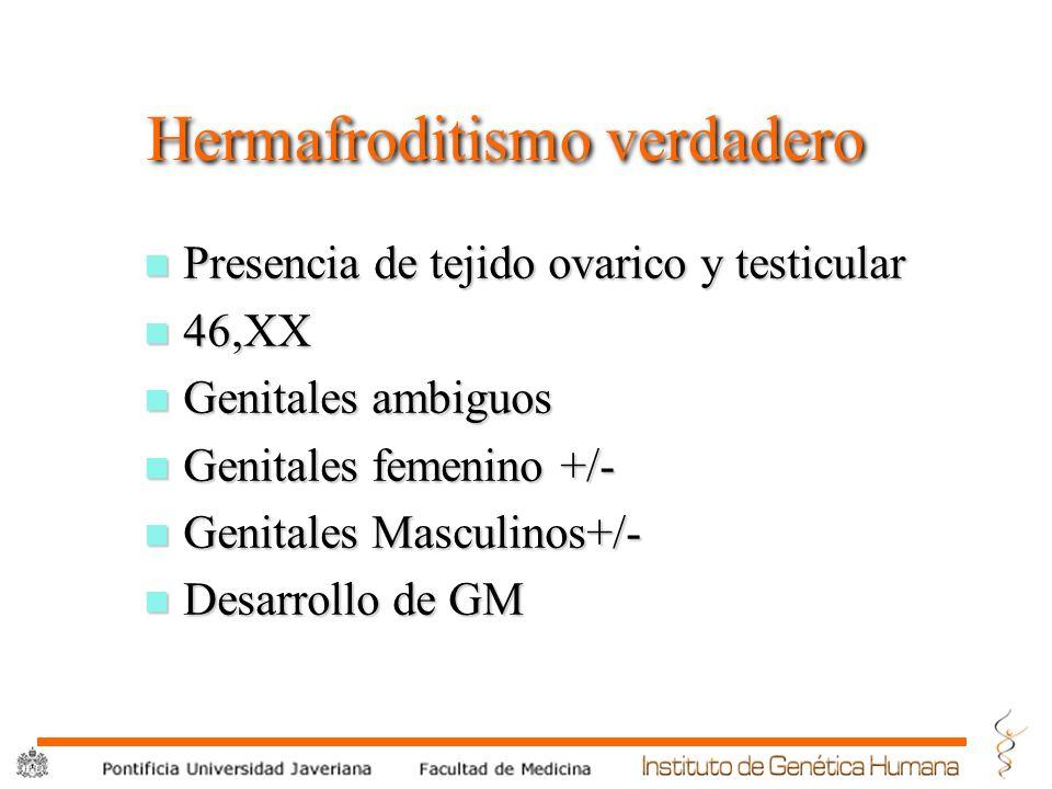 Hermafroditismo verdadero