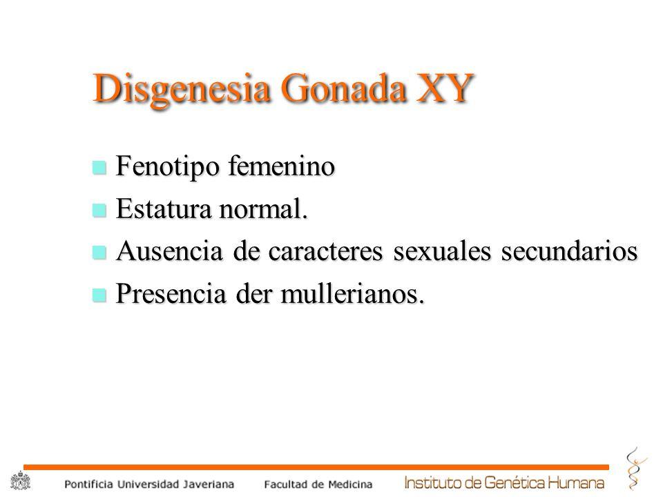Disgenesia Gonada XY Fenotipo femenino Estatura normal.