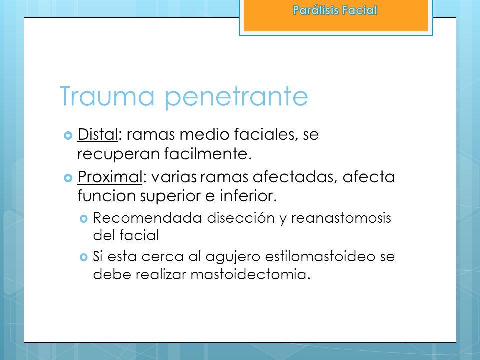 Parálisis Facial Trauma penetrante. Distal: ramas medio faciales, se recuperan facilmente.