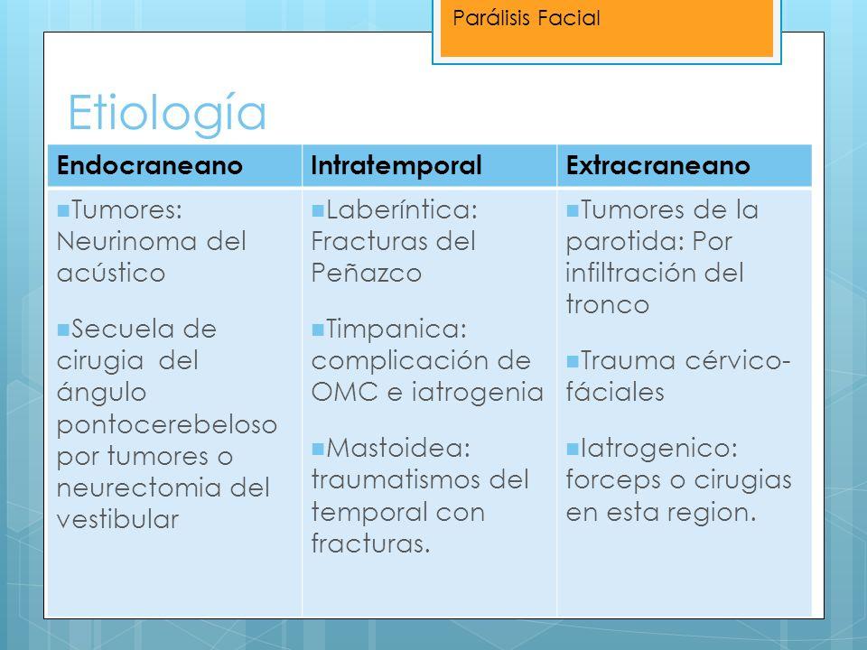 Etiología Endocraneano Intratemporal Extracraneano
