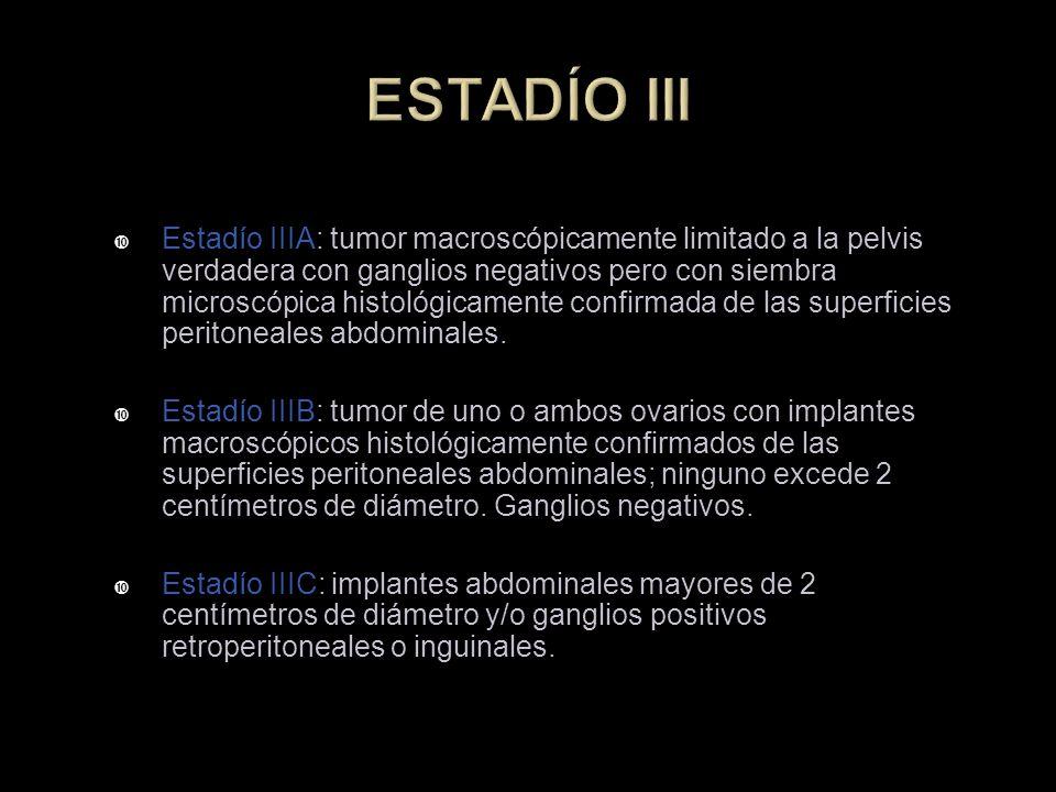 ESTADÍO III