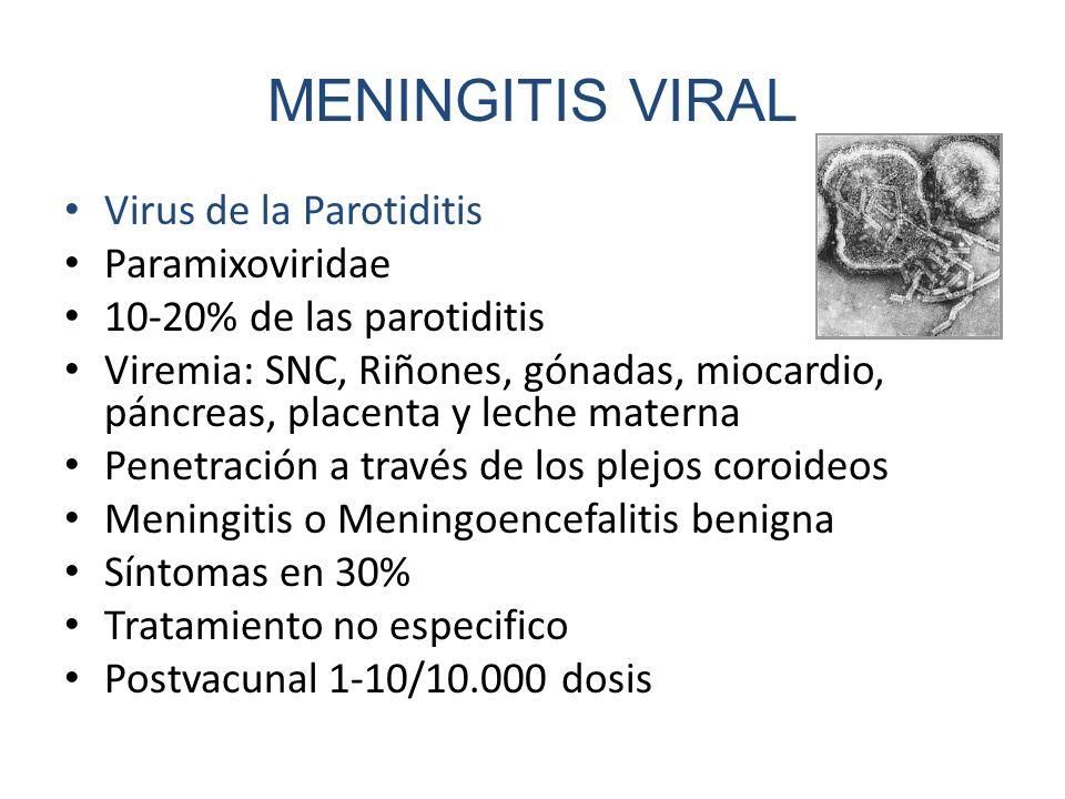 MENINGITIS VIRAL Virus de la Parotiditis Paramixoviridae