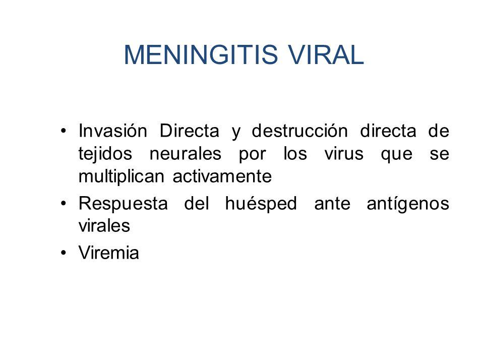 MENINGITIS VIRAL Invasión Directa y destrucción directa de tejidos neurales por los virus que se multiplican activamente.
