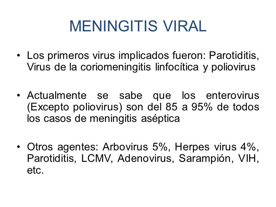 MENINGITIS VIRAL Los primeros virus implicados fueron: Parotiditis, Virus de la coriomeningitis linfocítica y poliovirus.