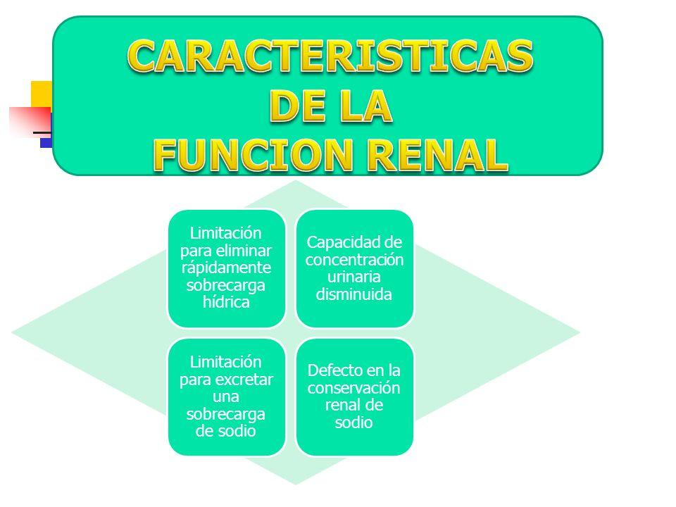 CARACTERISTICAS DE LA FUNCION RENAL