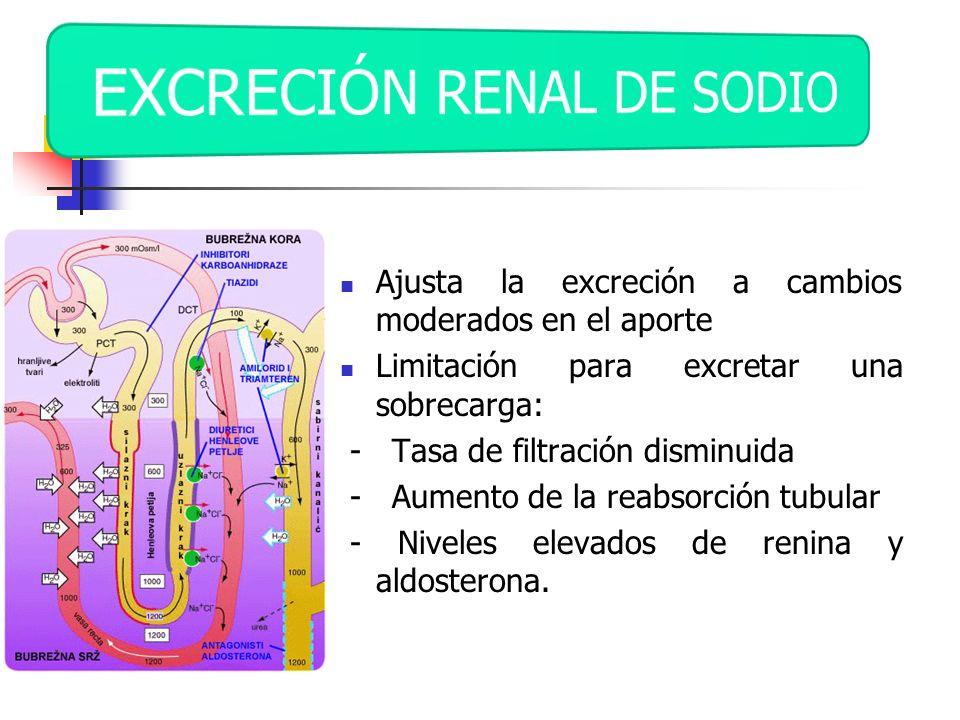 EXCRECIÓN RENAL DE SODIO