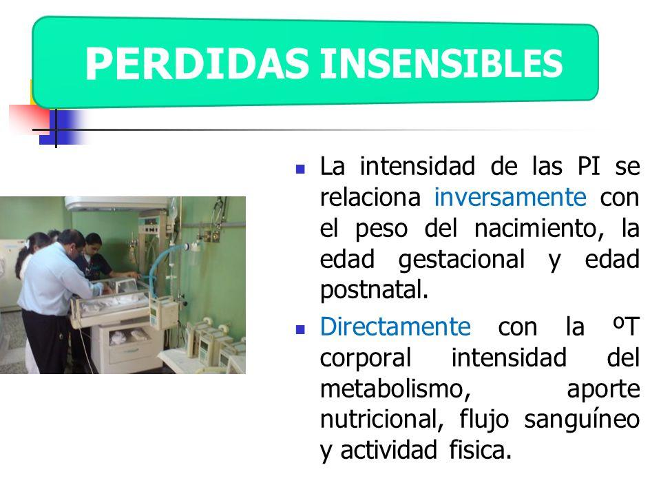 PERDIDAS INSENSIBLES La intensidad de las PI se relaciona inversamente con el peso del nacimiento, la edad gestacional y edad postnatal.