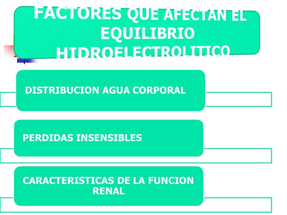 FACTORES QUE AFECTAN EL EQUILIBRIO HIDROELECTROLITICO