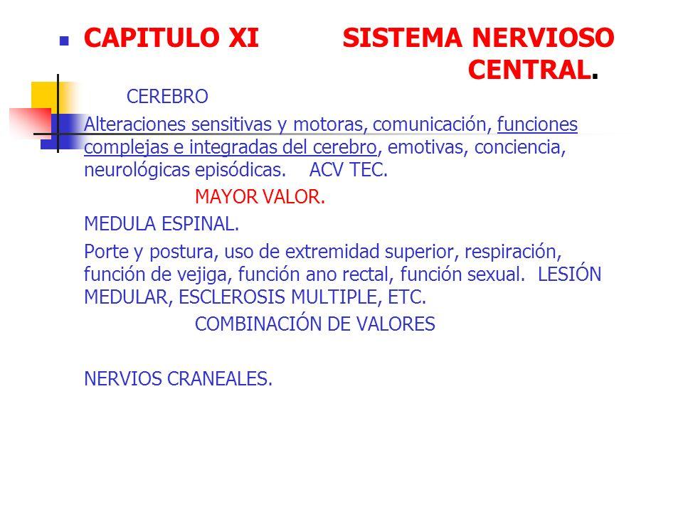 CAPITULO XI SISTEMA NERVIOSO CENTRAL. CEREBRO