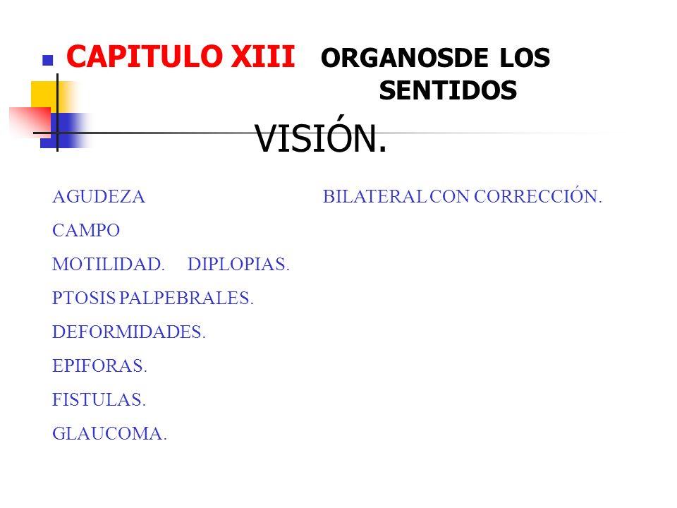VISIÓN. CAPITULO XIII ORGANOSDE LOS SENTIDOS