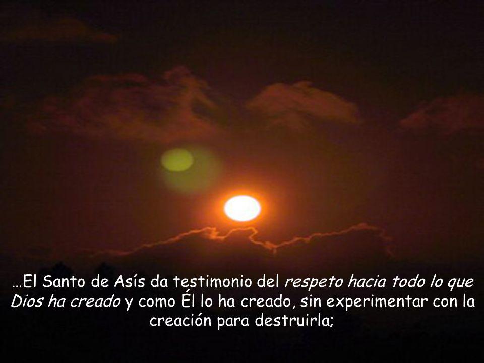 …El Santo de Asís da testimonio del respeto hacia todo lo que Dios ha creado y como Él lo ha creado, sin experimentar con la creación para destruirla;