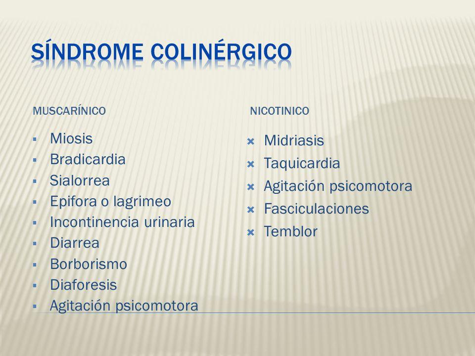 Síndrome Colinérgico Miosis Bradicardia Sialorrea Epifora o lagrimeo