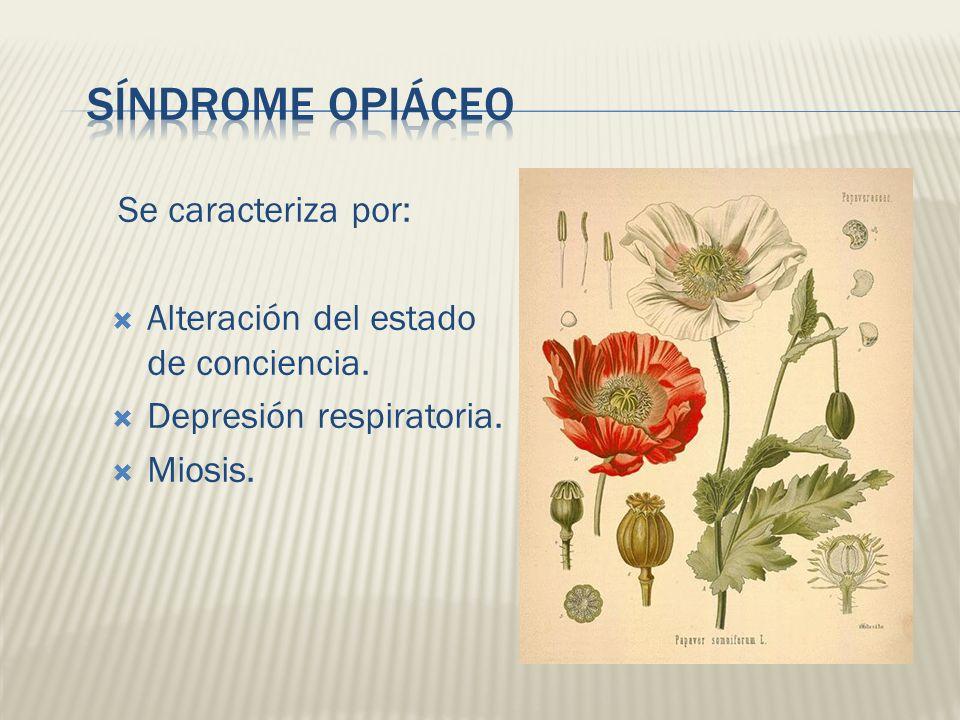 Síndrome Opiáceo Se caracteriza por: