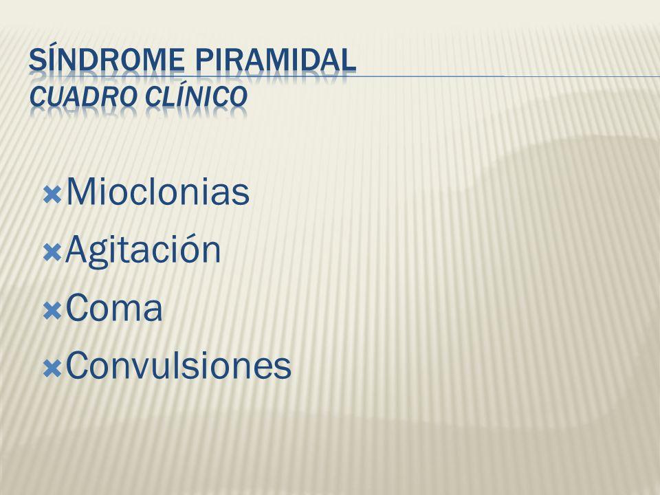 Síndrome Piramidal Cuadro Clínico