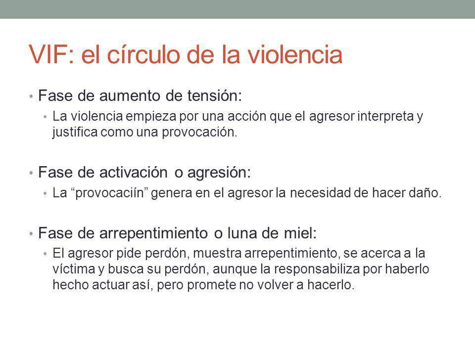 VIF: el círculo de la violencia