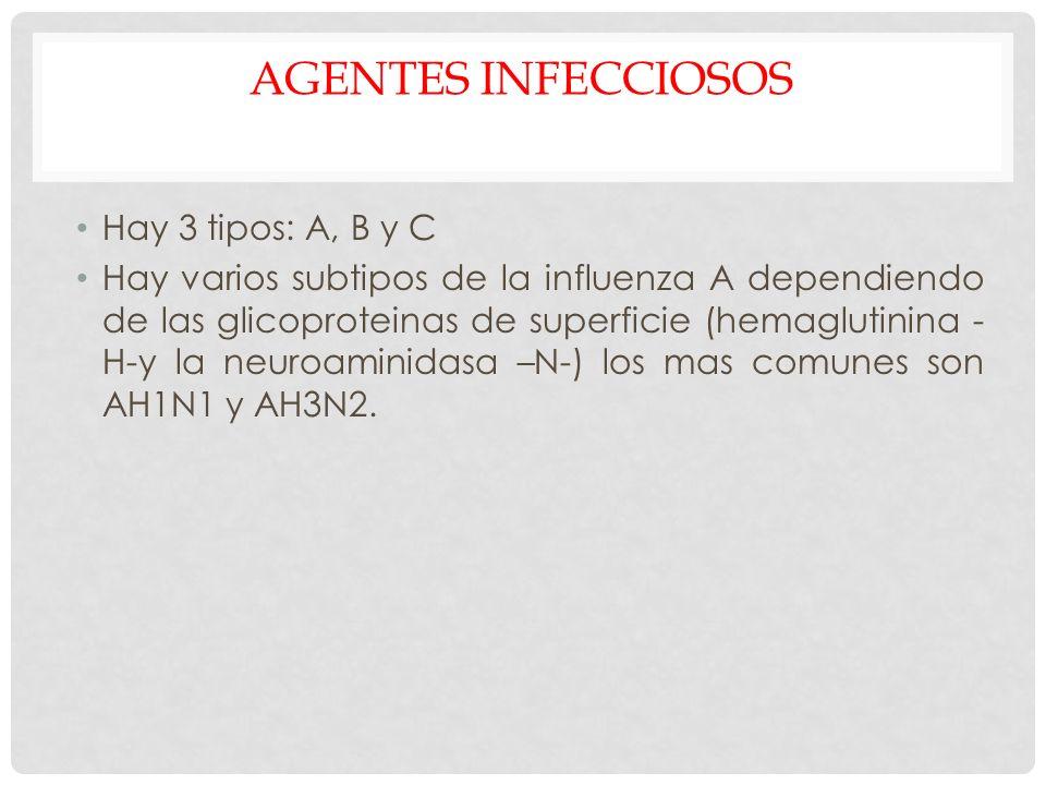 AGENTES INFECCIOSOS Hay 3 tipos: A, B y C