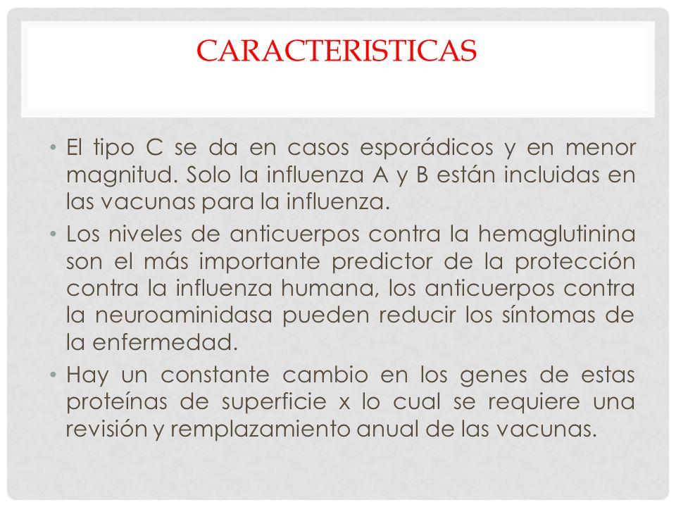CARACTERISTICAS El tipo C se da en casos esporádicos y en menor magnitud. Solo la influenza A y B están incluidas en las vacunas para la influenza.