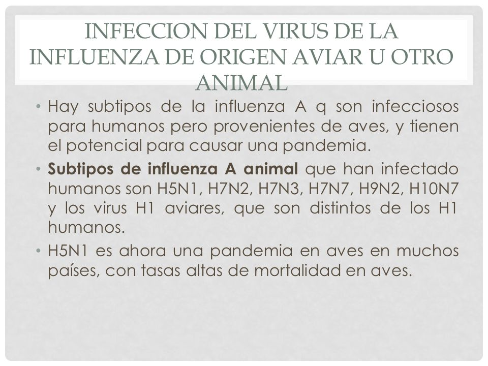 INFECCION DEL VIRUS DE LA INFLUENZA DE ORIGEN AVIAR U OTRO ANIMAL