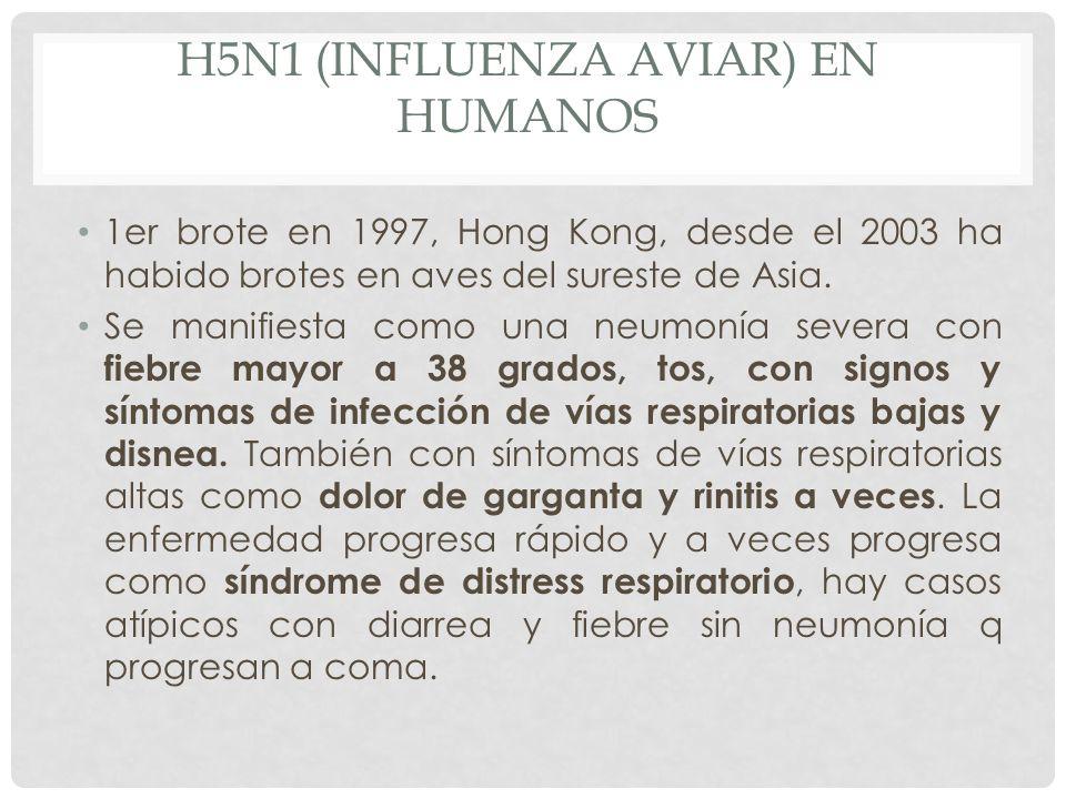 H5N1 (influenza aviar) en humanos