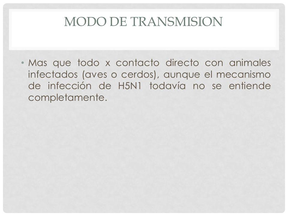 MODO DE TRANSMISION