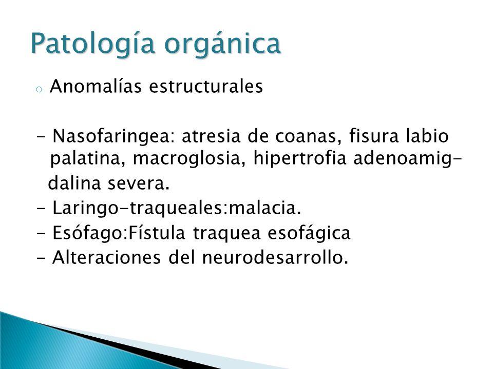Patología orgánica Anomalías estructurales