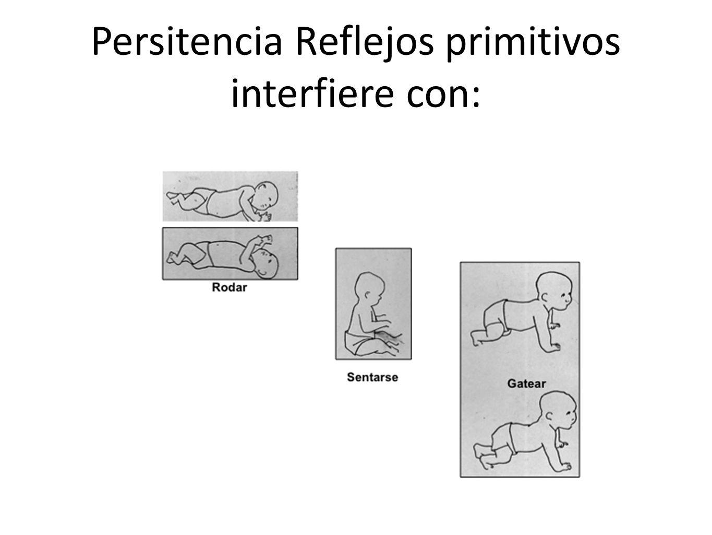 Persitencia Reflejos primitivos interfiere con: