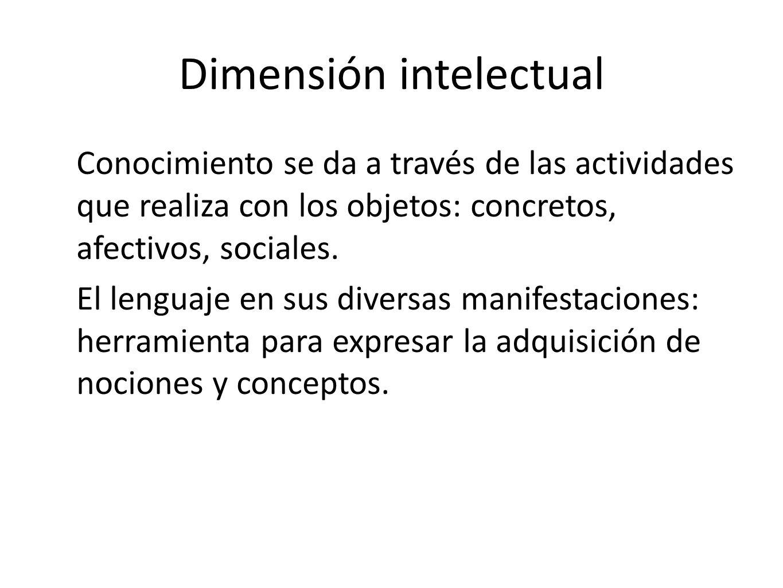 Dimensión intelectual