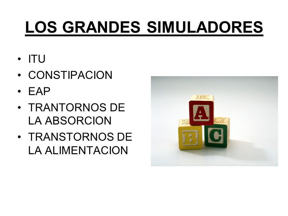 LOS GRANDES SIMULADORES