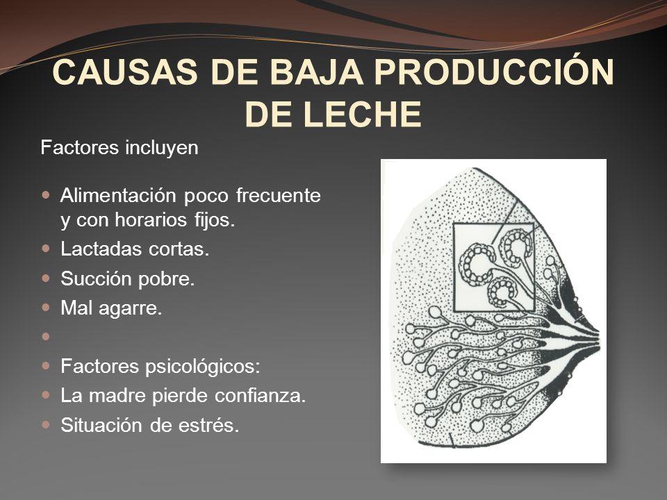 CAUSAS DE BAJA PRODUCCIÓN DE LECHE