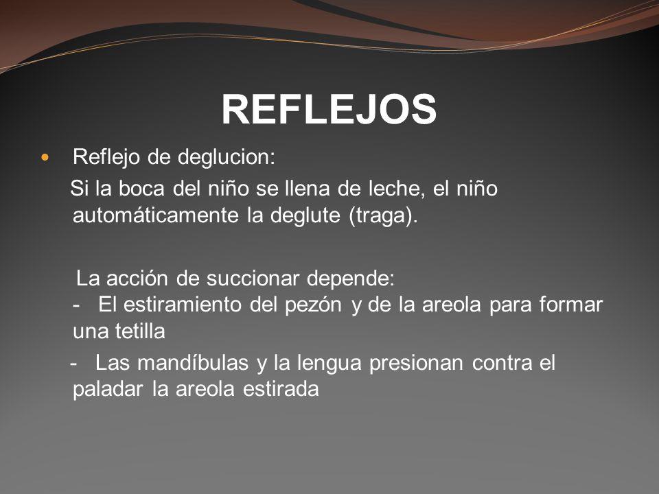 REFLEJOS Reflejo de deglucion: