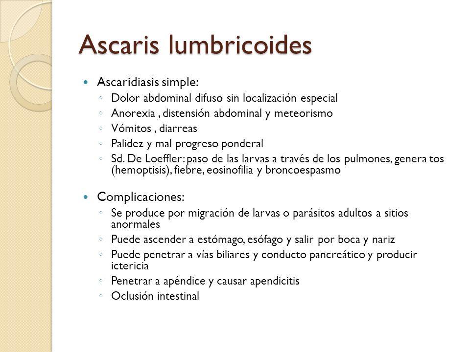 Ascaris lumbricoides Ascaridiasis simple: Complicaciones: