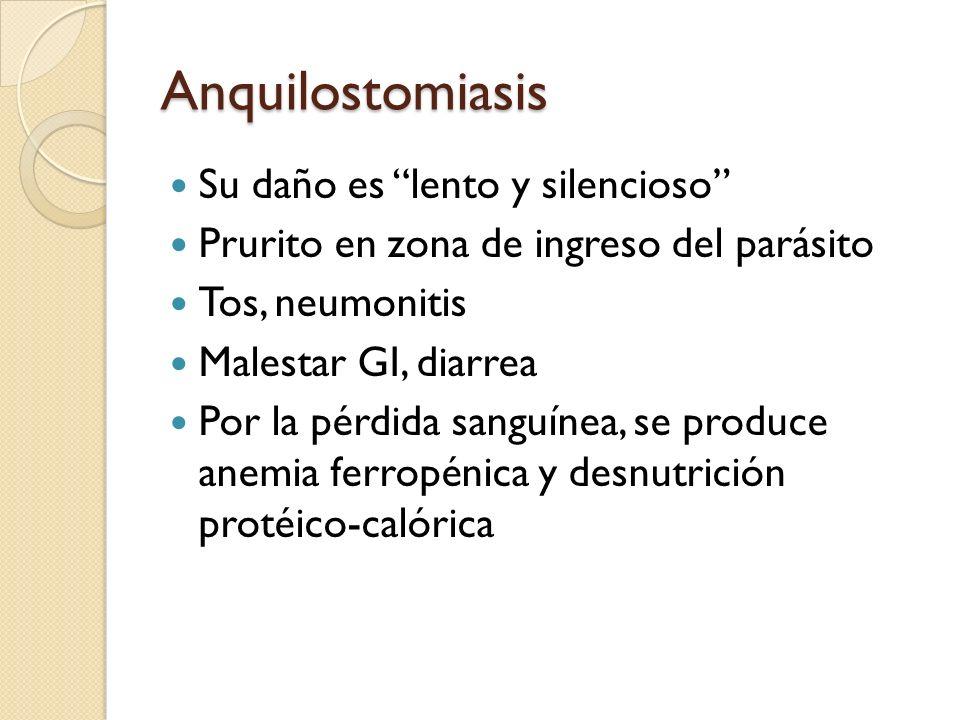 Anquilostomiasis Su daño es lento y silencioso