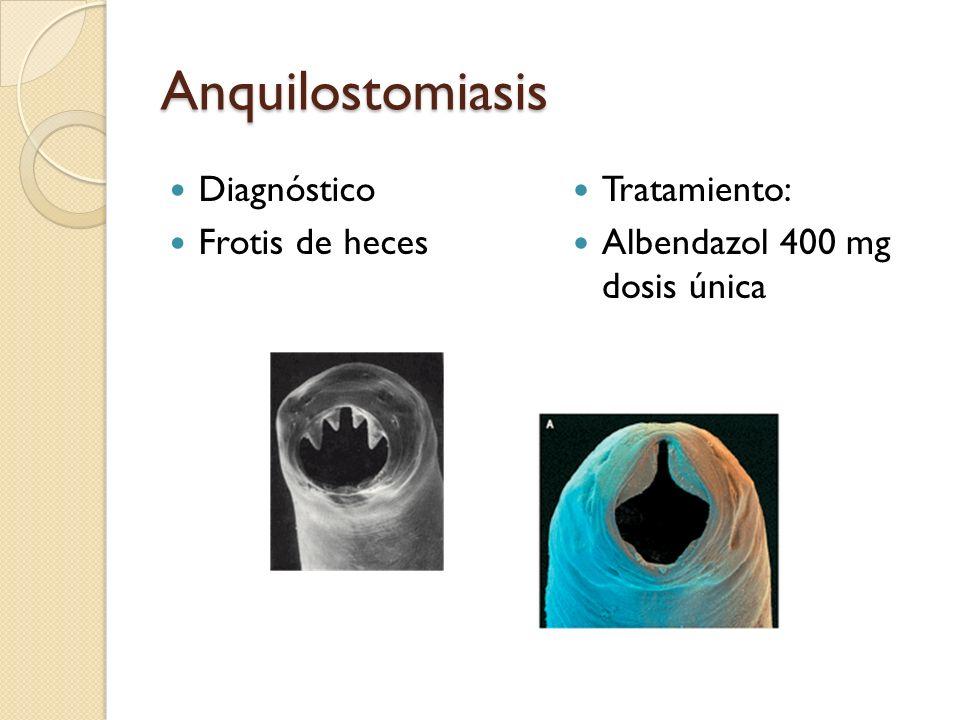 Anquilostomiasis Diagnóstico Frotis de heces Tratamiento: