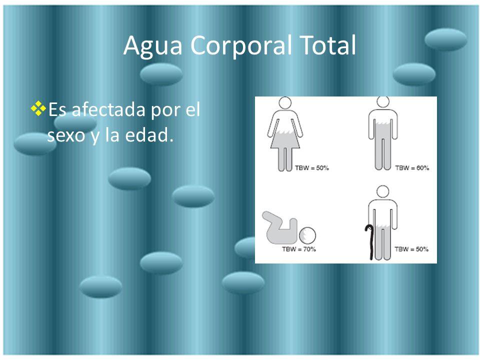 Agua Corporal Total Es afectada por el sexo y la edad.