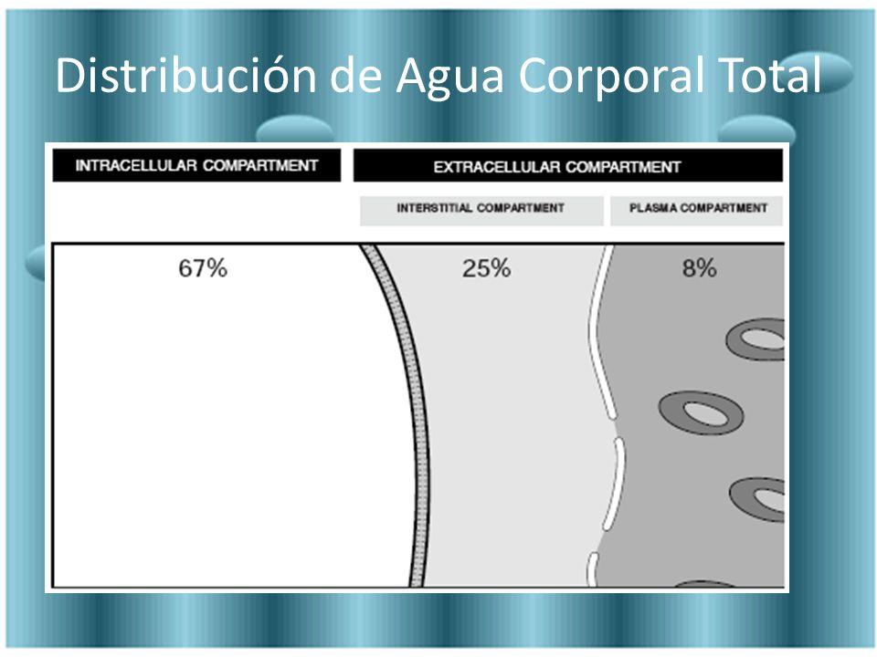 Distribución de Agua Corporal Total