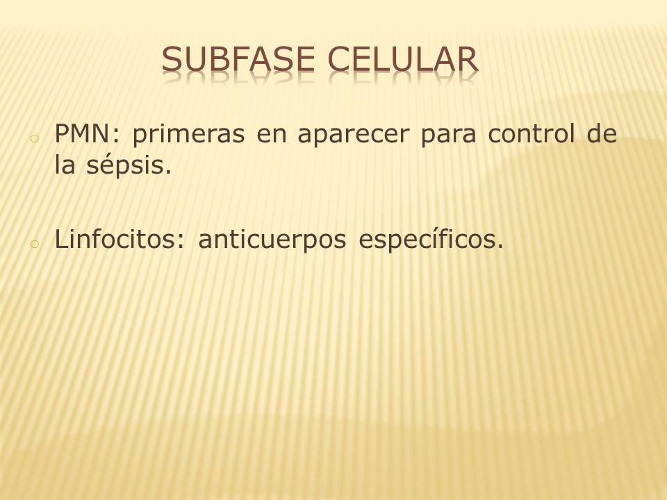 Subfase Celular PMN: primeras en aparecer para control de la sépsis.