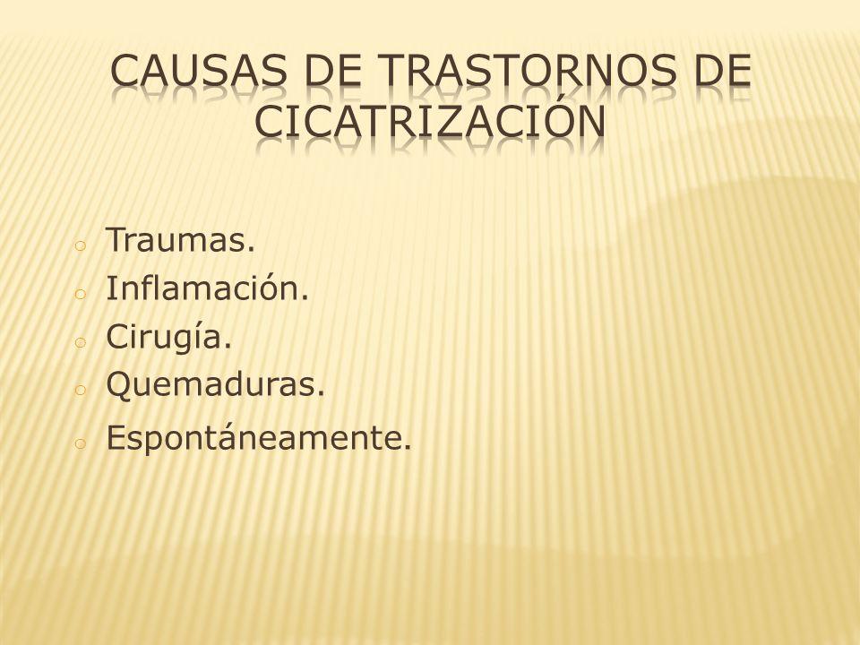 Causas de Trastornos de Cicatrización