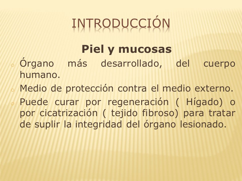 Introducción Piel y mucosas