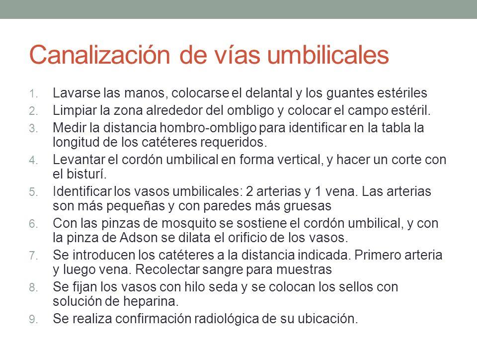 Canalización de vías umbilicales
