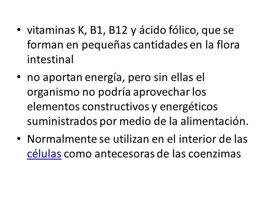 vitaminas K, B1, B12 y ácido fólico, que se forman en pequeñas cantidades en la flora intestinal