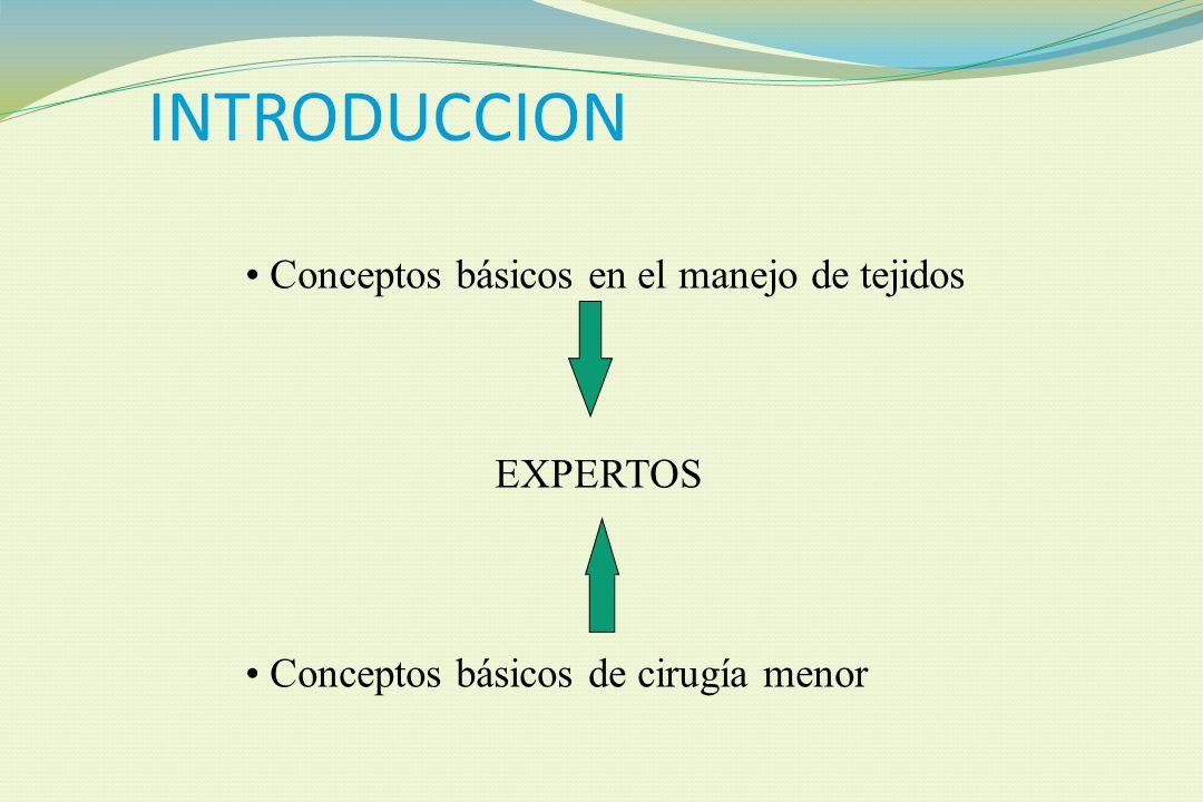 INTRODUCCION Conceptos básicos en el manejo de tejidos EXPERTOS