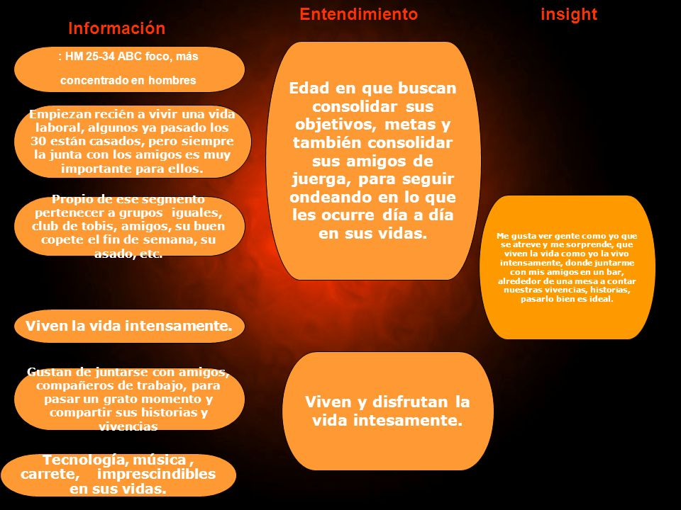 Entendimiento insight Información