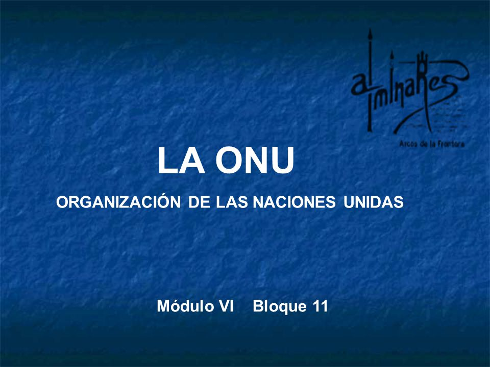 LA ONU ORGANIZACIÓN DE LAS NACIONES UNIDAS Módulo VI Bloque 11