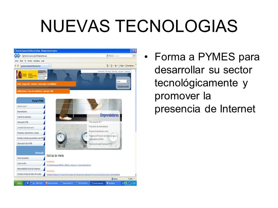 NUEVAS TECNOLOGIAS Forma a PYMES para desarrollar su sector tecnológicamente y promover la presencia de Internet.