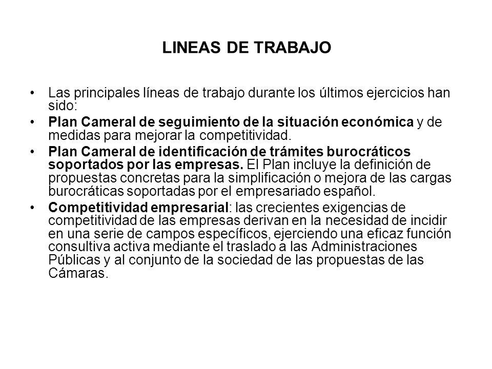 LINEAS DE TRABAJO Las principales líneas de trabajo durante los últimos ejercicios han sido: