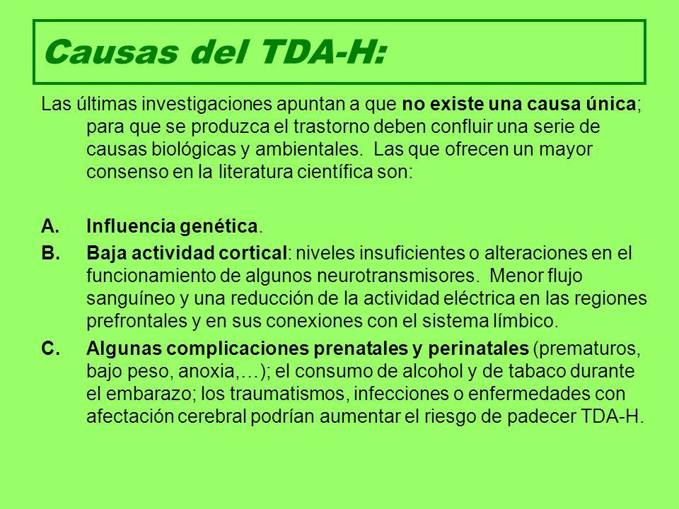 Causas del TDA-H: