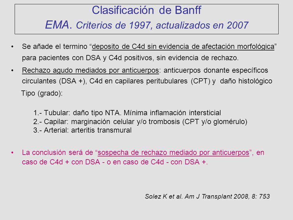 Clasificación de Banff EMA. Criterios de 1997, actualizados en 2007